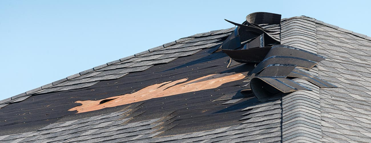 Roof Repair in Edmonton