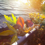 5 Fall Roof Maintenance Tips