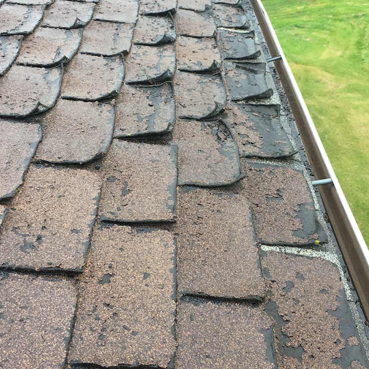 lifted roof shingled in edmonton